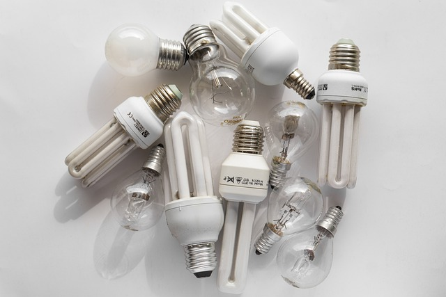 bulb-4957012_640