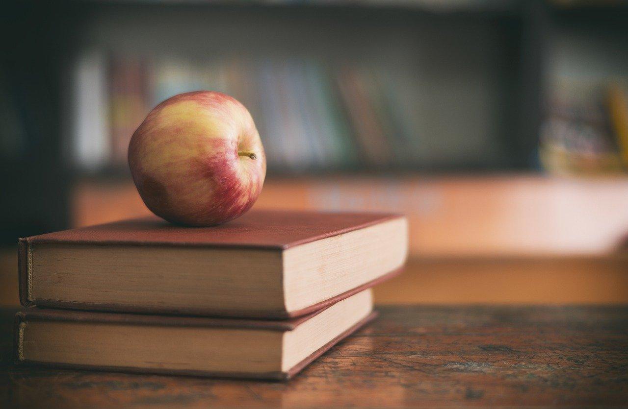 Por meio de questionário on-line, 402 entrevistados relataram aumento do volume e sobrecarga de trabalho, falta de tempo para se dedicar ao aprendizado e aplicação de novos métodos de ensino e/ou pesquisa e falta de estrutura adequada